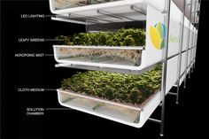 AeroFarms - An environmental champion, AeroFarms is leading the way to address our global food crisis by growing flavorful, healthy leafy greens in a sustainable and socially responsible way.