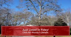 Up-to-date photos, maps, schools, neighborhood info. & details for 107 Apollo Ct, Foley, AL direct from Renae Stringer