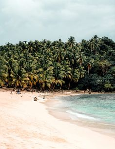 Siargao is a hidden paradise in the Philippines. Visit the island for delicious food, surfing and all these other things to do in Siargao. Voyage Philippines, Philippines Travel Guide, Visit Philippines, Philippines Culture, Siargao Philippines, Beach Trip, Beach Vacations, Hawaii Beach, Travel