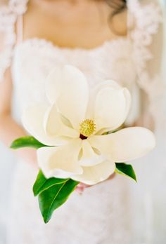 """Brides.com: All-White Wedding Bouquets. A Single-Bloom Magnolia Bouquet. This extra-large magnolia looks fake (like a giant, immaculately crafted paper flower), but it's the real deal. It was plucked right out of a tree moments before the shot was taken, actually. While the bride was getting ready, she spotted some outside her window and sent her wedding photographer, Jose Villa, out to pick one for her portrait session. """"Simple is always better,"""" says California-based Villa, who happily…"""