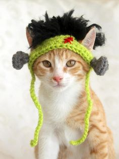 Looking for a fun Halloween costume for your little monster? This Frankenstein hat would make for an easy and funny costume for your cat, kitten, or small dog.  Each Frankenstein hat is hand crocheted from acrylic yarns. It has 2 ear holes, 2 bolts on the sides, and a some fuzzy black hair (made from brushed yarn).  ---- Wearing Instructions ----  Place the hat on your pets head and gently insert the ears into the ear holes. The straps may be tied below your pets chin to help keep the hat in…