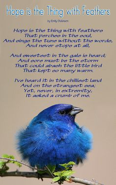 """Emily Dickinson  """"Hope is the thing with feathers ..."""" My most favorite poem of all time..."""