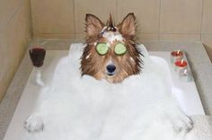 A Spa Day....my kind of spa....