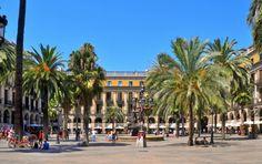 Plaza Real. Barcelona