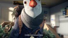Image result for british gas penguin