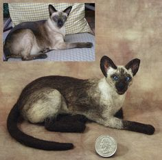 *NEEDLE FELT ~ Farley - needle felted Siames cat Pritten by bjmaiee, via Flickr
