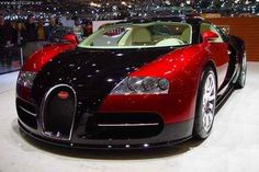 Love the colors and the sleek and futuristic design.  Buggati Veyron - 1 of the top 10 most expensive cars in the world at $  1.7 million. Top speed of 407 km/h.