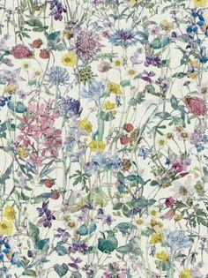 Wild Flowers A