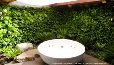 """PlantsOnWalls created a fern paradise for this private residence in California's Los Altos Hills. Two Floraframe Living Wall Kits measuring 192"""" wide by 87"""" high were mounted to the existing masonry walls to create homes for 504 ferns."""
