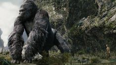 Veteran Colorist David Cole Joins Fotokem Embarks on 'Kong: Skull Island'  He previously worked on Peter Jackson's 'King Kong.'  read more