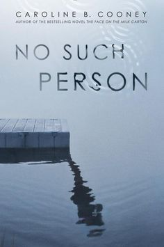 A riveting thriller set against the backdrop of a bucolic summer town on the Connecticut River | No Such Person by Caroline B. Cooney