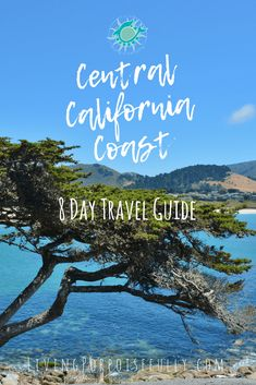 8 day travel vacation trip guide to the Central California Coast – itinerary, tips, recommendations for Monterey Bay, Big Sur, Pacific Coast Highway, Carmel, and more! From the Living Porpoisefully blog