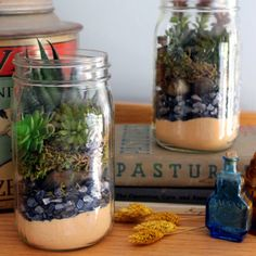 Make this mason jar succulent terrarium for your home or to give as a gift!