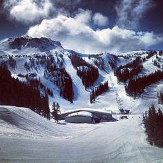 Spring Skiing in Whistler #evo