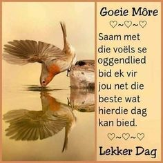 Morning Greetings Quotes, Good Morning Messages, Good Morning Wishes, Good Morning Quotes, Lekker Dag, Afrikaanse Quotes, Goeie More, Morning Blessings, Special Quotes