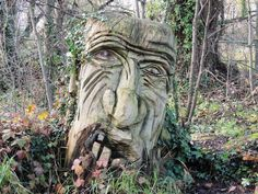Carved-tree-stump