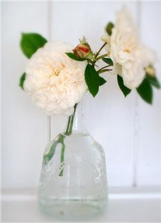 two roses in glass
