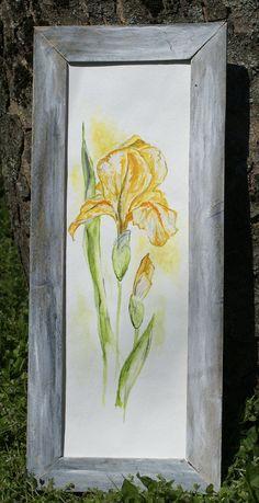 Aquarell Mohn Schwertlilie und Sonnenhut von