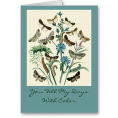 You Fill My Days With Color Greeting Cards