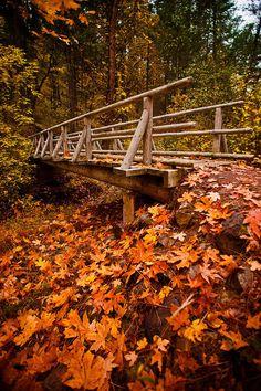 Applegate Valley, Jackson County, Oregon, United States by John Bruckman