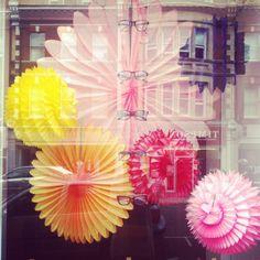 Opticians window St.Johns Wood, London