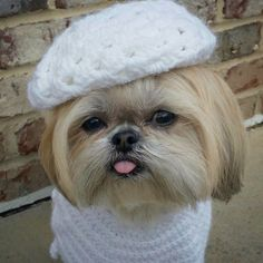 Hooray for the beret! #sparkles #sparklesthediva