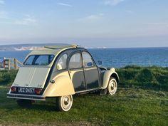 2cv6, Ducks, Antique Cars, Classic Cars, My Photos, Automobile, Summer, Citroen 3cv, Old Cars