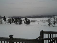 MARK PAYNE, HARRISONBURG 	 THE VIEW FROM OUR DECK. SHENANDOAH MT. #WHSVsnow