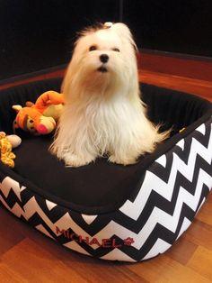 Moises,sillon,cama Para Perro,bordado Del Nombre Incluido!! - $ 540,00 en Mercado Libre