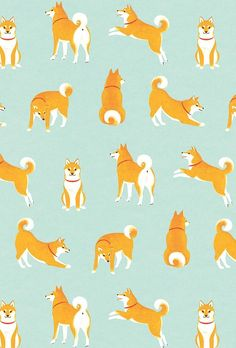 shiba inu (dogs) ©️️ shino All rights reserved. Shiba Inu, Shiba Puppy, Dog Wallpaper Iphone, Wallpaper Backgrounds, Corgi Wallpaper, Dog Pattern, Pattern Art, Art And Illustration, Pattern Illustrations