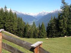Blick auf das Ahrntal von der Schönberg Alm in Weissenbach - vista sulla Valle Aurina dalla malga Schönberg a Rio Bianco