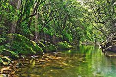 基隆 瑪陵坑溪