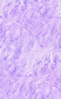 lavenderxolilac: Its so fluffy!!
