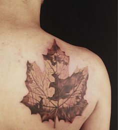 Another leaf idea. Would change the picture inside.