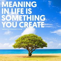 Remember to pursue your passion and find your purpose. Create a meaningful life.