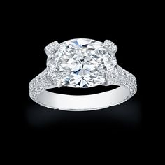 Oval Cut Diamond set in pave platinum ring....if I ever have my oval engagement ring reset this would be a setting I'd consider.  So unique.