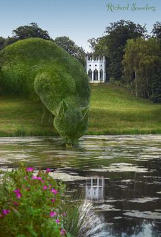 Even imaginary Topiary Cats need a drink at times  Richard Saunders