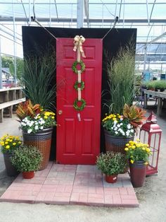 Colorful holiday door, as an addition to fall containers! Christmas Plants, Christmas Garden, Christmas Displays, Garden Nursery, Plant Nursery, Garden Center Displays, Garden Centre, Door Displays, Retail Displays