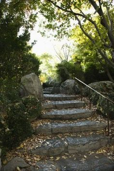 Google Image Result for http://us.123rf.com/400wm/400/400/iofoto/iofoto0803/iofoto080300248/2654867-stone-stairs-in-outdoor-garden-in-sydney-australia.jpg