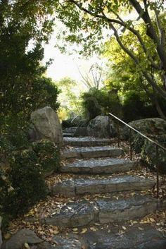 Google Image Result for http://us.123rf.com/400wm/400/400/iofoto/iofoto0803/iofoto080300248/2654867-stone-stairs-in-outdoor-garden-in-sydney-australia.jpg