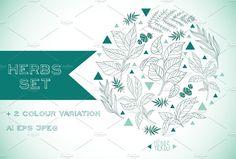 Herbs set by beauty drops on @creativemarket