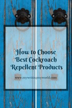 Home Safety Tips: How to Choose Best Cockroach Repellent Products