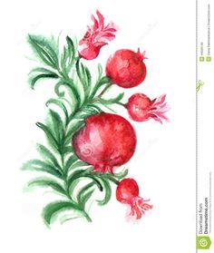 watercolor-branch-pomegranate-background-scrapbook-paper-design-batik-cards-decoupage-44026749.jpg (1098×1300)