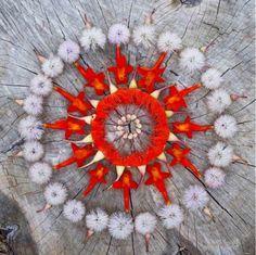 Flower Power Mandala ~ Danmala by Kathy Klein