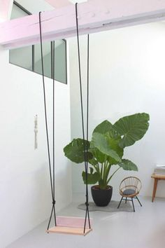 #alocasia. unique room with minimalist furniture - swing, greenery, seating.