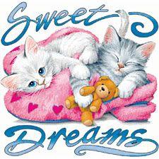 Good Night and Sweet Dreams. Good Night Sister, Good Night Prayer, Cute Good Night, Dream Night, Good Night Blessings, Good Night Sweet Dreams, Good Night Image, Good Morning Good Night, Gd Morning