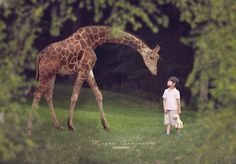 A boy and his giraffe. Child photography. Composite photography
