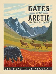 Gates of the Arctic National Park • See Beautiful Alaska ~ Anderson Design Group