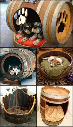"Cute? Will this work with your pampered pooch or will it still demand your side of the bed? There are lots of ways of repurposing wine barrels. View them on our ""Recycled Wine Barrels"" album at http://theownerbuildernetwork.co/byl6 Trash or Treasure?"