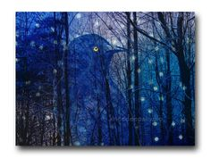 Wintry Night by Tim and Linda Hestand on Etsy